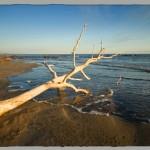 Cape Dommit EKSP16